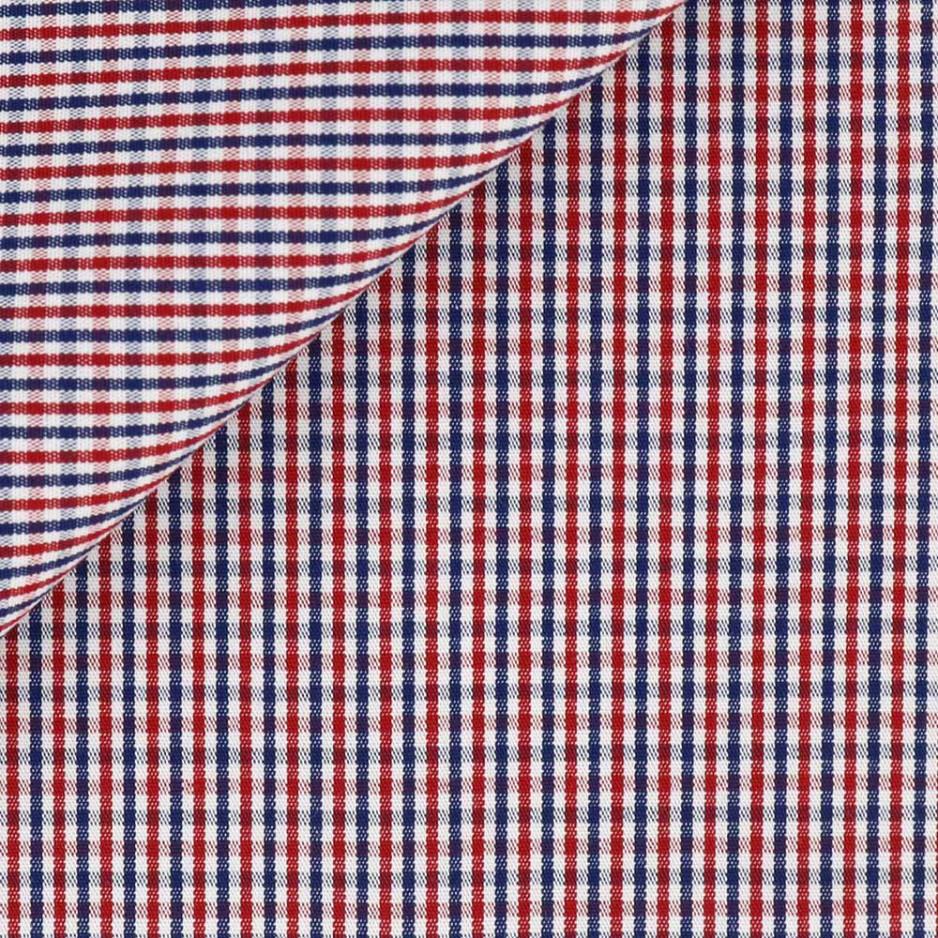 Poplin Check Pattern Blue Red