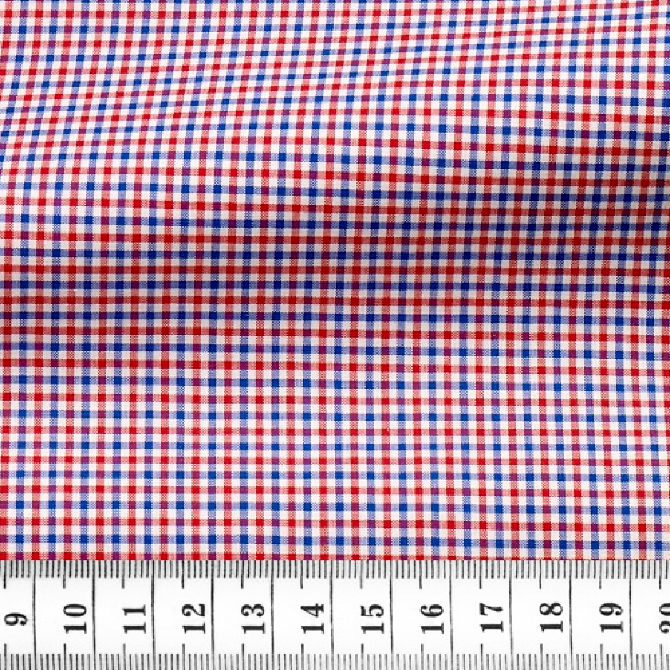 Zephir Check Pattern Blue Red