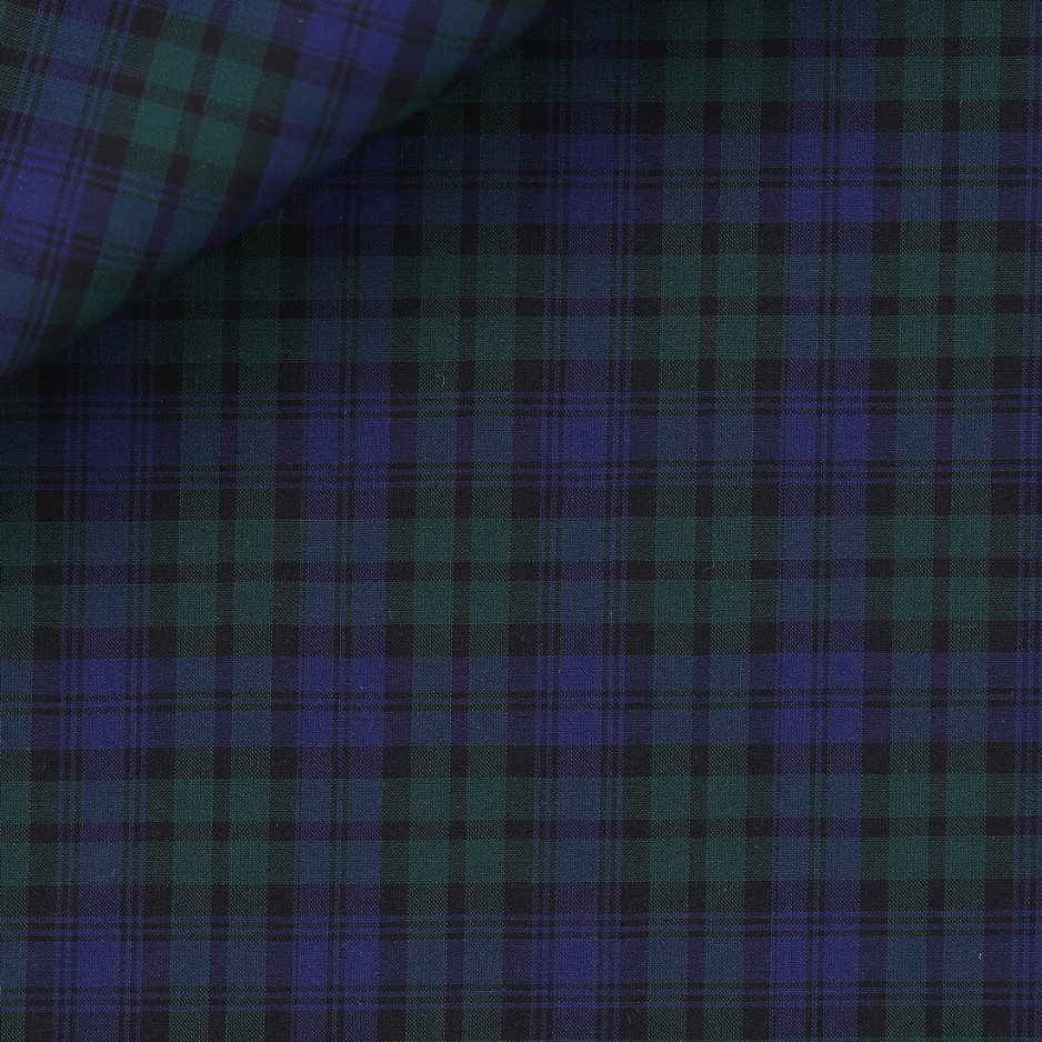 Poplin Check Pattern Blue Green